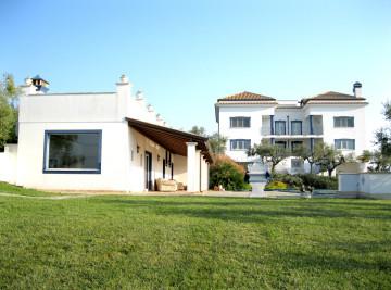 Villa Del Federico