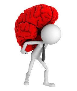 codice appalti pubblici: cervello in spalla