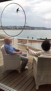Miko Giardino e Mario Michetti dello Studio Zero85